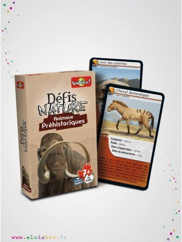 Jeu-de-carte-defis-nature-animaux-préhistorique-Bioviva_ELOisBIO-fd