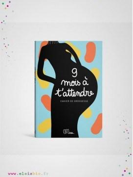 livre-ecologique-grossesse-femme-enceinte-9-mois-attaendre-minuseditions_eloisbio